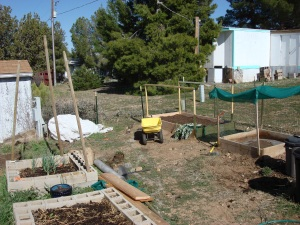 the new beds, and fence